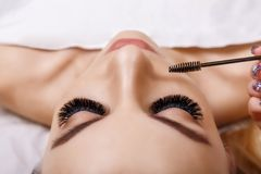 Eyelash Extension Procedure. Woman Eye with Long Eyelashes. Close up, selective focus. Hollywood, russian volume royalty free stock photo