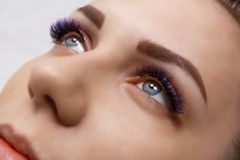 Eyelash Extension Procedure. Woman Eye with Long Blue Eyelashes. Ombre effect. Close up, selective focus. stock image
