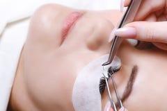 Eyelash Extension Procedure. Woman Eye with Long Eyelashes. Lashes, close up, selected focus. Royalty Free Stock Photography