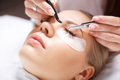 Eyelash Extension Procedure. Woman Eye with Long Eyelashes. Lashes, close up, selected focus. Stock Photo