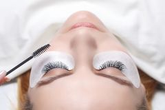 Eyelash Extension Procedure. Woman Eye with Long Eyelashes. Lashes, close up, selected focus. Stock Photos