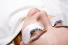 Eyelash Extension Procedure. Woman Eye with Long Eyelashes. Lashes, close up, selected focus. Stock Image