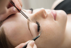 Eyelash Extension Procedure.  Woman Eye with Long Eyelashes. Stock Photo