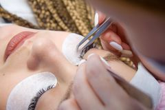 Eyelash Extension Procedure. Woman Eye with Long false Eyelashes. Close up macro shot of tweezers in hands of beautican.  royalty free stock photography