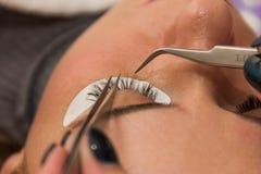 Eyelash extension process, the beauty industry beauty Stock Photos