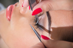 Eyelash Extensions Royalty Free Stock Photo