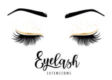 Eyelash extensions logo. Vector illustration of lashes. For beauty salon, lash extensions maker Royalty Free Stock Photo