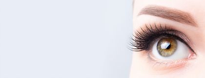 Eyelash lamination, extensions, microblading, tattoo, permanent, cosmetology, ophthalmology banner or background. Eye with long