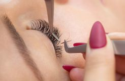 Eyelash removal procedure close up. Royalty Free Stock Photo