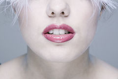 eyelashes μακριά s γυναίκα προσώπο&upsi στοκ εικόνα με δικαίωμα ελεύθερης χρήσης