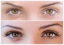 eyelashes ψεύτικος φυσικός στοκ φωτογραφία με δικαίωμα ελεύθερης χρήσης
