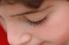 Eyelashes Royalty Free Stock Photography