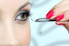 Eyelashes Stock Image
