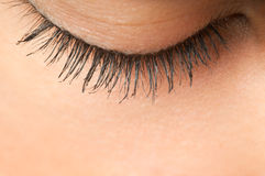 Eyelashes στοκ φωτογραφία