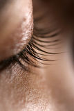 Eyelashes Stock Photo