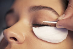 Eyelashes beauty. Woman in spa, eyelash beauty Royalty Free Stock Photo
