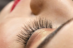 Eyelashes Close up Stock Images