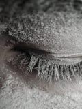 Eyelashes Royalty Free Stock Image