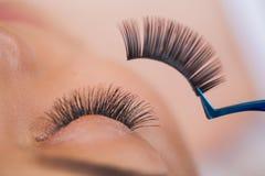 Eyelashes extensions. Fake Eyelashes. Eyelash Extension Procedure. Professional stylist lengthening female lashes royalty free stock photos