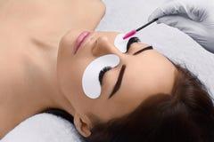 Free Eyelashes Extensions. Fake Eyelashes. Stock Photos - 98534753
