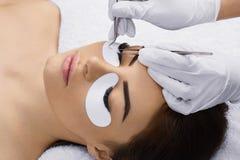 Eyelashes extensions. Fake Eyelashes. royalty free stock photo