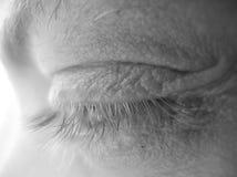 Eyelashes in grayscale. Macro Stock Photos