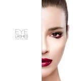 eyelashes Schoonheid en make-upconcept royalty-vrije stock afbeeldingen