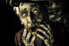 Eyeless pirate. Horror novel character. Aggressive angry pirate, risen from the dead. Halloween royalty free stock photography