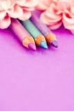 Eyepencils et fards à paupières sur le pourpre avec des pétales Photo stock