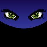 eyes тайна Стоковые Изображения RF