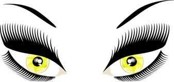 Eyes. Eye yellow eyelash fashion  visual white woman Stock Photography