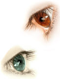 Eyes Stock Image