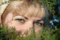 Eyes Stock Images