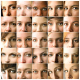 Eyes. Composition of diverse women's eyes Royalty Free Stock Photo