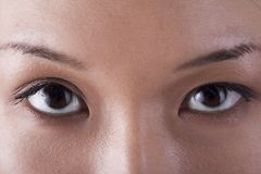 The Eyes royalty free stock images