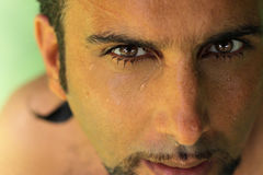 Eyes. Detailed closeup of man's face with intense dark eyes Stock Photography