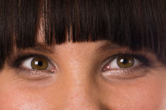 Eyes Royalty Free Stock Photo