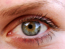 Eyes Royalty Free Stock Photos