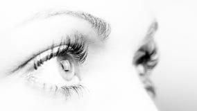 Eyes. Hi key image of eyes Stock Photo