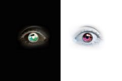Eyes. Two eyes, two colors Vector Illustration
