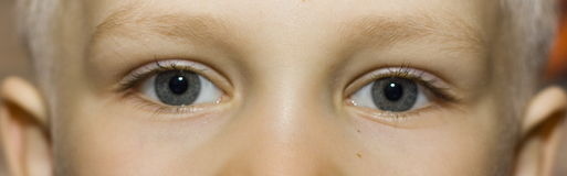 Eyes. Little boys eyes Royalty Free Stock Image