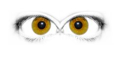 Eyes. Mirror eye Royalty Free Illustration