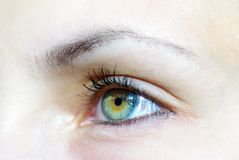 Eyes Royalty Free Stock Photo