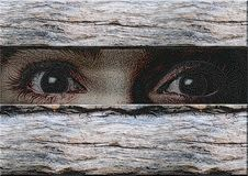 Those eyes. Great creative colorful abstract portrayal of eyes looking because of the wooden wall Royalty Free Stock Photography