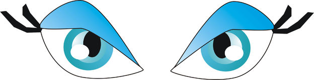Eyes. Illustration of eyes vector illustration