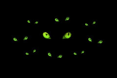 Eyes. Illustration of set of the cat's eyes on a black background Stock Photos