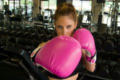 Eyes Above Pink Boxing Gloves 2 Royalty Free Stock Photo