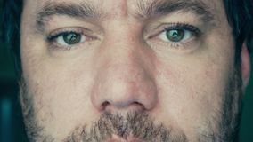 Eyes of adult men. Eyes of an adult caucasian man. Front view of a person`s face. The man is looking at the camera. The man's gaze looks ahead stock video