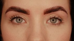 Eyes of a beautiful girl. After eyebrow correction procedure. Professional facial treatment in a beauty salon. Reflection of many lights in the eyes stock footage