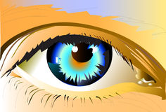 Eyes bright Royalty Free Stock Photography